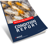 Condition Report Book