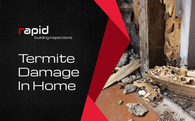 Termite Damage In Home